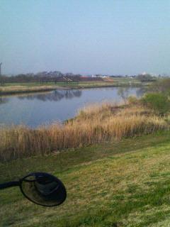 小貝川下流